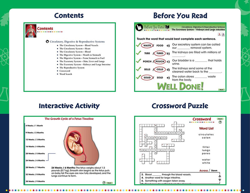 Circulatory, Digestive & Reproductive Systems - DIGITAL LESSON PLAN