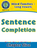 Word Families - Long Vowels: Sentence Completion