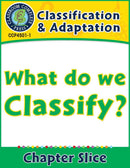 Classification & Adaptation: What Do We Classify? Gr. 5-8