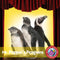 Mr. Popper's Penguins (Novel Study)