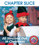 All Stressed Out at Christmas - CHAPTER SLICE