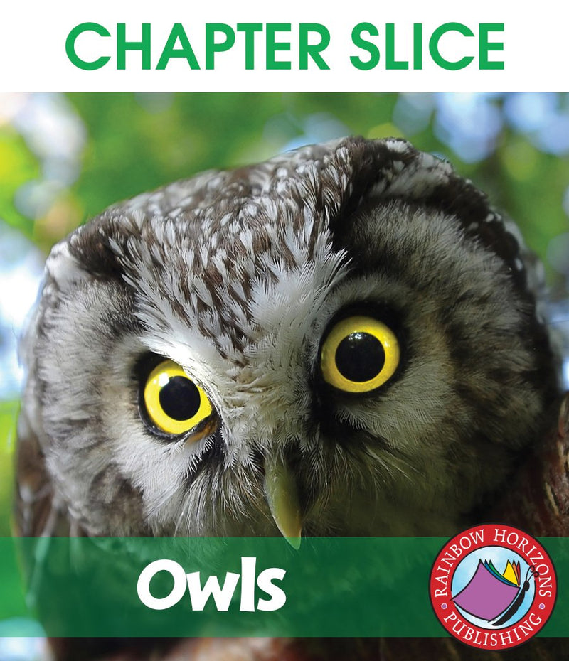 Owls - CHAPTER SLICE