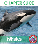 Whales - CHAPTER SLICE