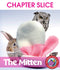 The Mitten (Novel Study) - CHAPTER SLICE