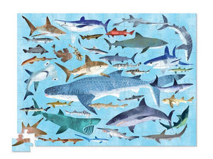 36 Sharks Puzzle (300 Pieces)