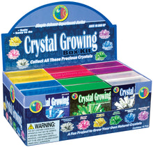 Load image into Gallery viewer, Crystal Growing Kit (assorted colors)
