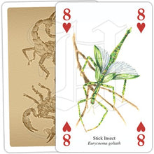 Load image into Gallery viewer, Insects and Spiders Playing Cards
