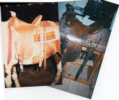 Nancy Martiny Saddle First Built