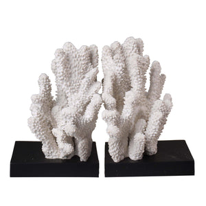 Coral Bookends - Shop Decorative Objects - DARRA HOME
