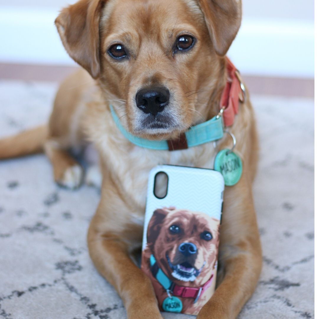 Custom Pet Art Snap Phone Case