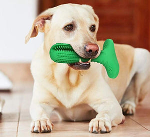 Denchew - Pet Toy Toothbrush