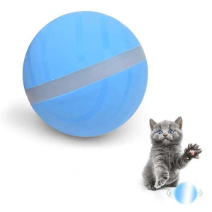 AutoPlay - Interactive Rolling Pet Toy