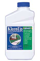 AGWAY KLEENUP GRASS & WEED KILLER CONCENTRATE 1 QT.
