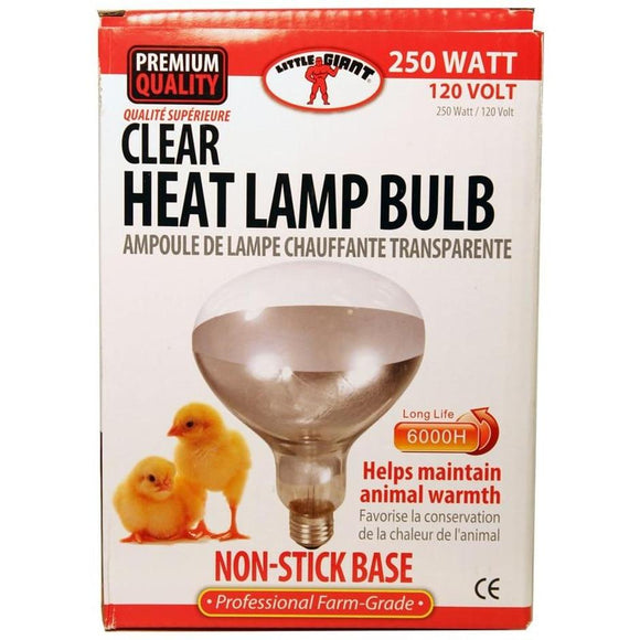 LITTLE GIANT CLEAR HEAT LAMP BULB