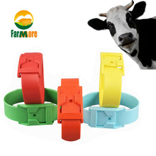 Load image into Gallery viewer, Multicolor Cattle Identification Ring Cow Mark Band Green Red Yellow Orange Blue Color Footmark Band Farm Animal