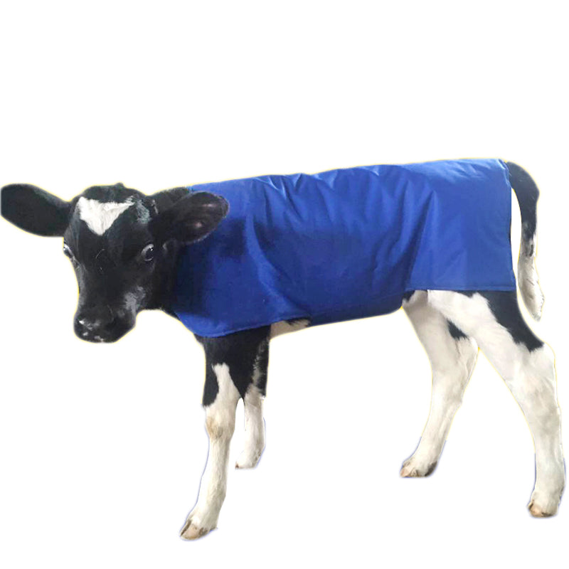 Livestock Cow Calf Vest Calf Cold protection Coat Thermal Suit Oxford Fabric Coat Wind-Proof and Water-Proof Calf Warm Clothing