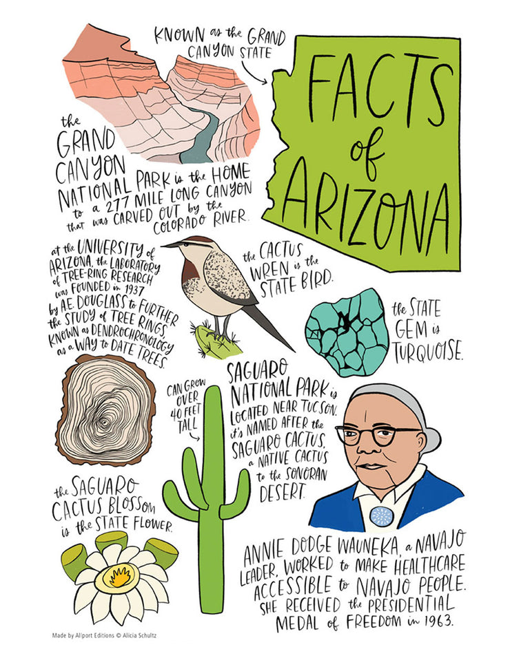 Arizona State Facts Kitchen Tea Towel - 100% Cotton Kitchen Towel
