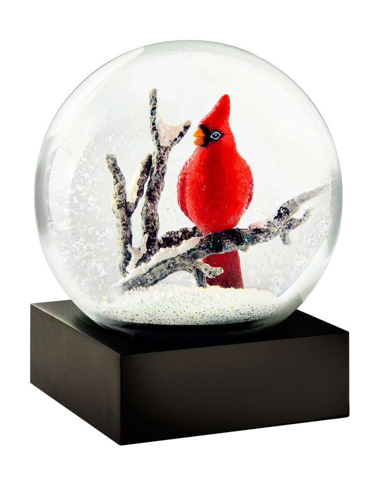 Red Cardinal Bird Snow Globe by CoolSnowGlobes