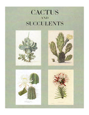 Cactus and Succulents Plants Note Cards Boxed Set of 16 with Envelopes