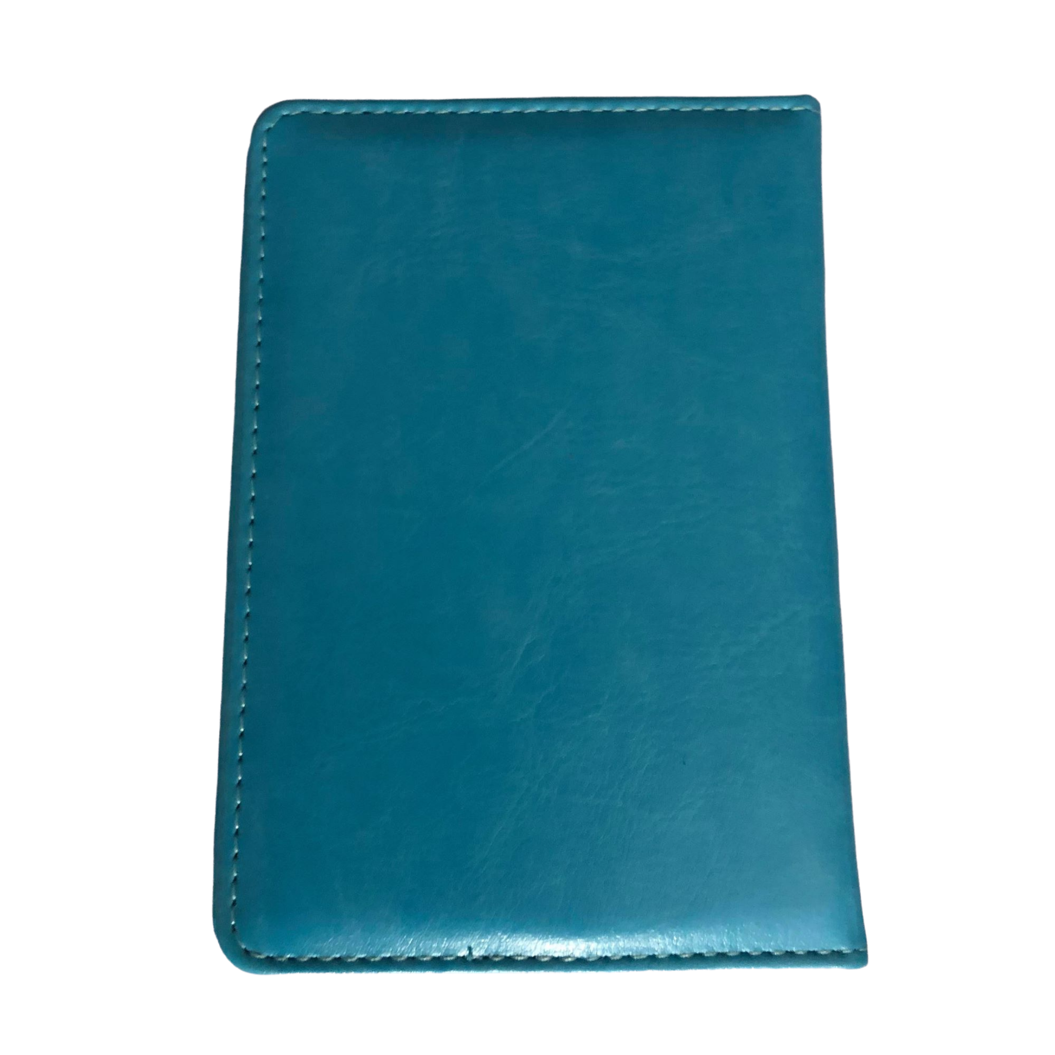 Fashion Passport Holder- Turquoise