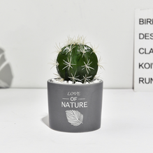 Load image into Gallery viewer, Succulent Simulation Green Plant Small Potted Cactus Ball