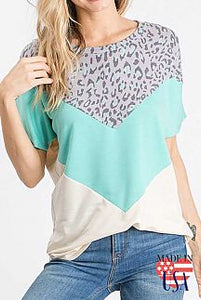 Chevron Color Block Mint & Animal Print