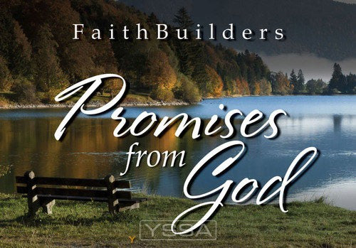 Promises from God - 5 x 4 designs