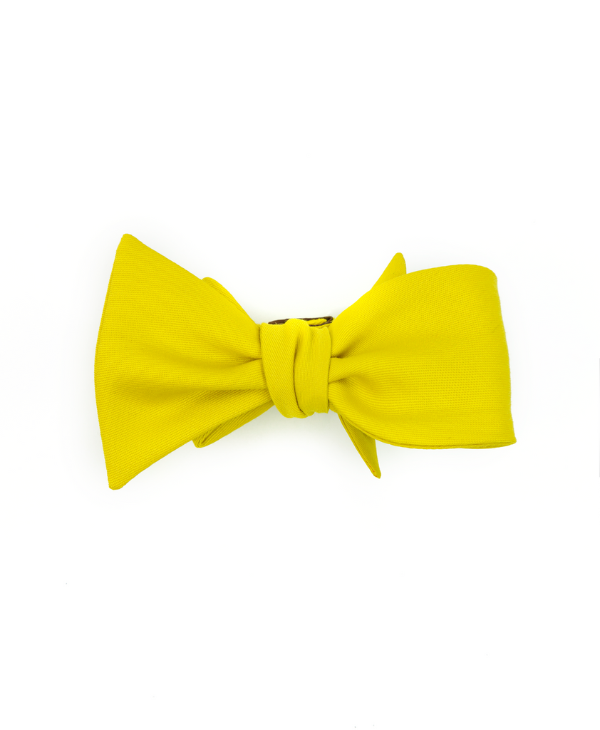 The Capital Butterfly Bow Tie