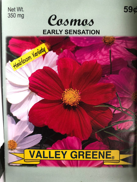 COSMOS FLOWER SEEDS - Unusual Finds Discount Store