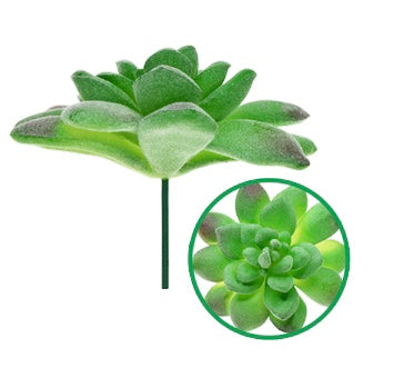LARGE SUCCULENT ENCHANTED GARDEN SERIES - Unusual Finds Discount Store