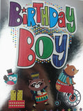 HAPPY BIRTHDAY BOY GREETING CARD - Unusual Finds Discount Store