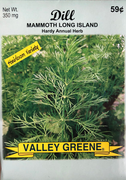 DILL GARDEN SEEDS - Unusual Finds Discount Store