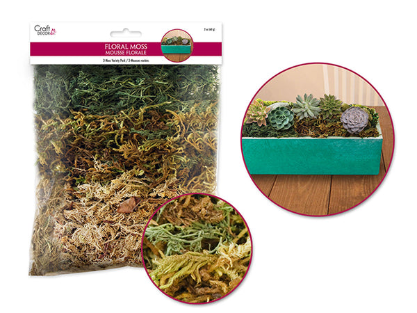 FLORAL MOSS 3 VARIETY - Unusual Finds Discount Store
