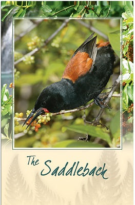 Saddleback Bird Sound Card