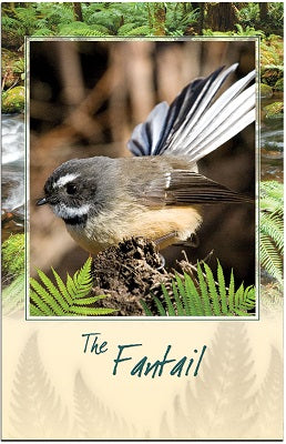 Fantail Bird Sound Card