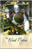Wood Pigeon Bird Sound Card