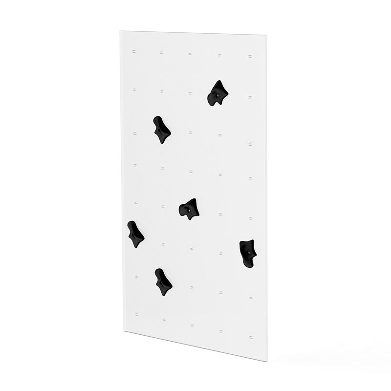 Titan Part Climbing Wall Panel Rig/Wall Mount - RAW Fitness Equipment