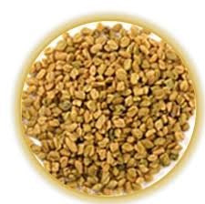 Fenugreek Seed Whole 16 OZ (1 Pound)