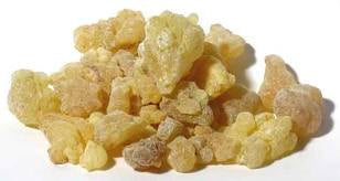 Frankincense Resin Tears 2 OZ Egyptian