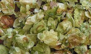 Hops Flowers Whole Sweet 16 Oz (1 Pound) USA