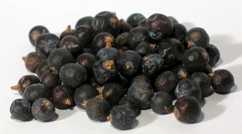 Juniper Berries Whole 16 Oz (1 Pound)