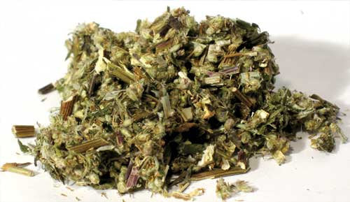 Mugwort Cut Dried Wild Crafted 1 Pound Artemisia Vulgaris