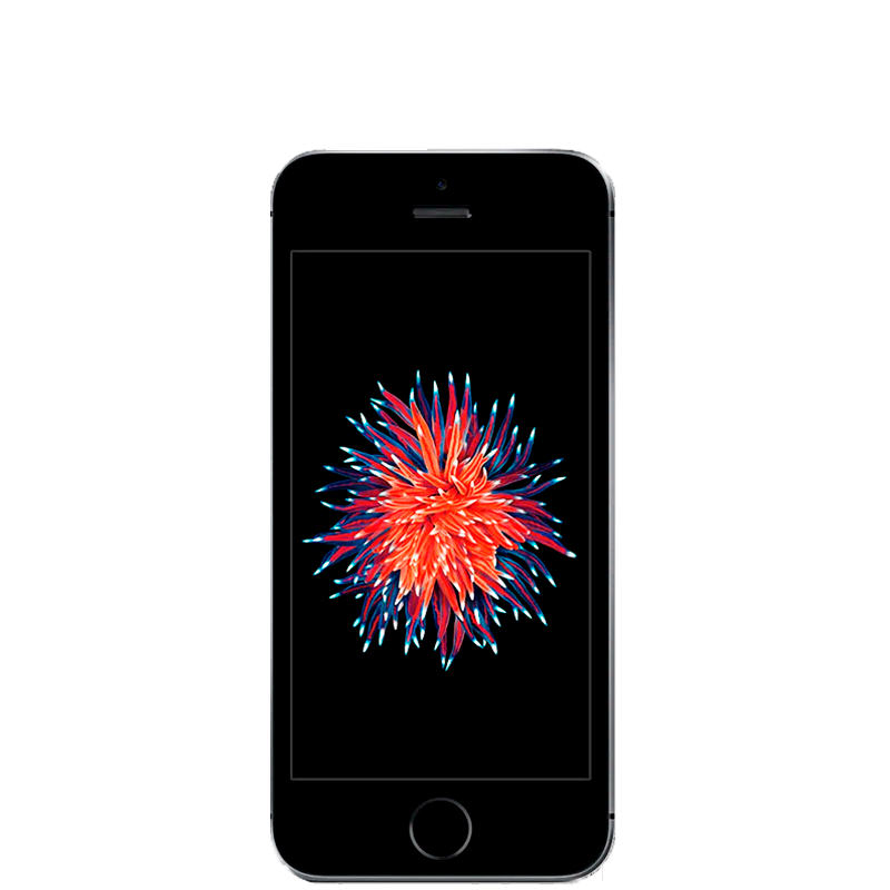 iPhone SE con 16 GB color  Gris Espacial |  Reacondicionado - Casi Perfecto