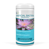 Aquascape Beneficial Bacteria Concentrate - Dry