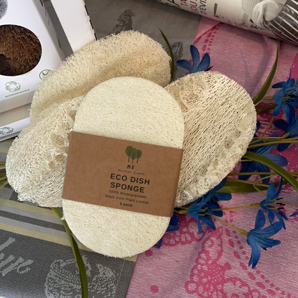 Eco Dish Sponges