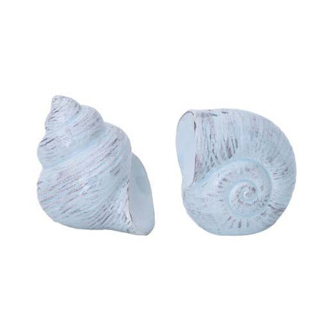 Blue Shell Salt and Pepper Shaker Set