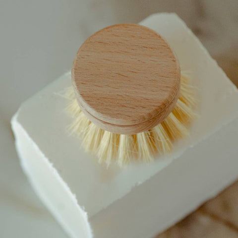 Agave and Teak Dish Brush Head