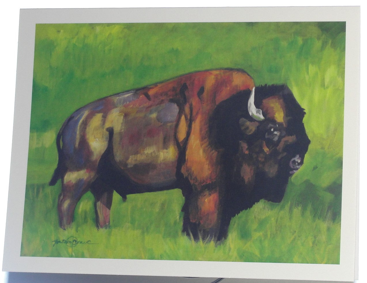 Note card, Bison in early Spring