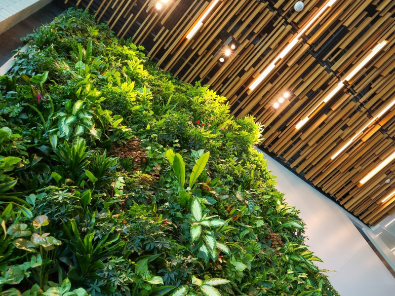 6 Sustainable Home Design Trends to Watch in 2021
