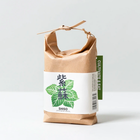 Shiso Japanese Basil Kit